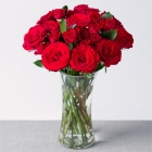 Romantic Red Roses