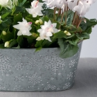 Image of Frosty Flower Planter