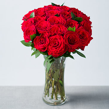 Image of 24 Red Roses