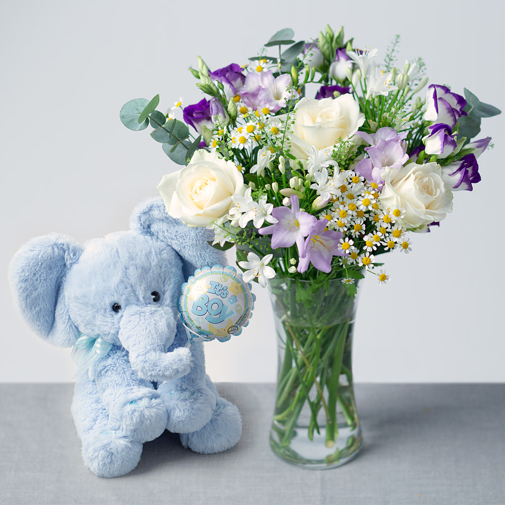 Image of Celebrate the arrival of a new born baby boy with our new baby boy gift, including a beautiful bouquet for mum and an adorable teddy for baby.White Avalanche Roses purple Carnations, purple Tulips and Lilac Alstromeria are accompanied by lavender Statice and Aralea Leaf.Displayed in a cute purple gift bag and with no arranging needed, it makes the perfect gift for a new mum!