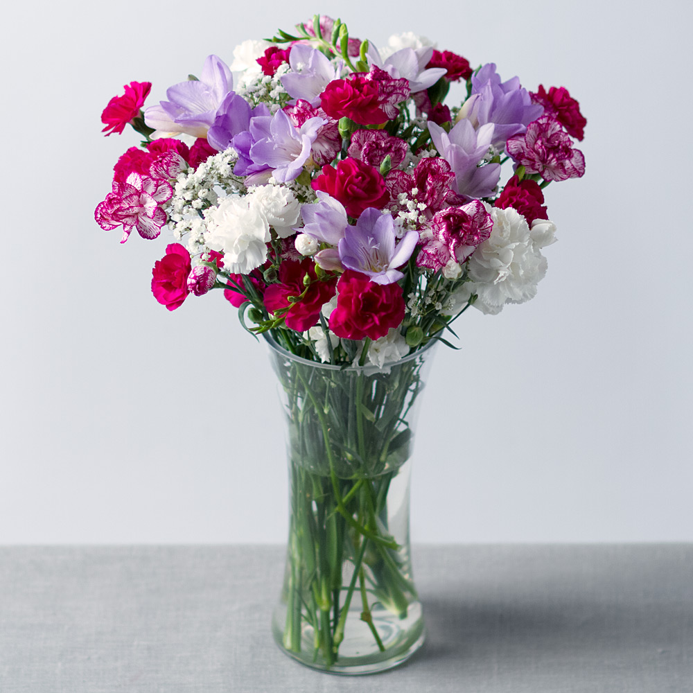 Image of A charming arrangement of lilac Freesias beautifully complemented with a delightful mixture of purple, white and purple-edged Spray Carnations.Perfectly finished with white Gypsophila, this will make a wonderful gift for someone special.