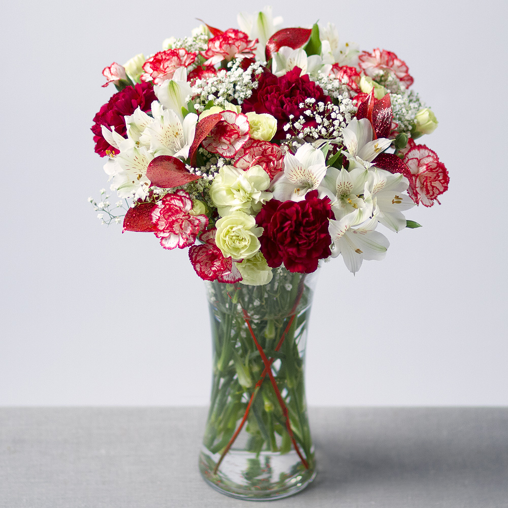Image of A long lasting Christmas bouquet with Spray Carnations in colours of red, burgundy and green accompanied by white Alstroemeria.Red Ruscus leaves and white Gypsophila provide the finishing touch.