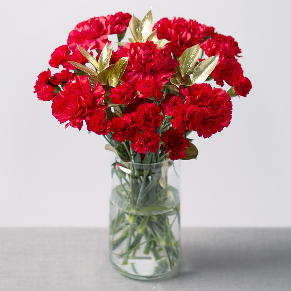Image of A festive favourite featuring six long-lasting red single Carnations and six red Spray Carnations with gold Ruscus leaves.Our Carnations have been carefully selected for strength and longevity from the worlds' best growers.