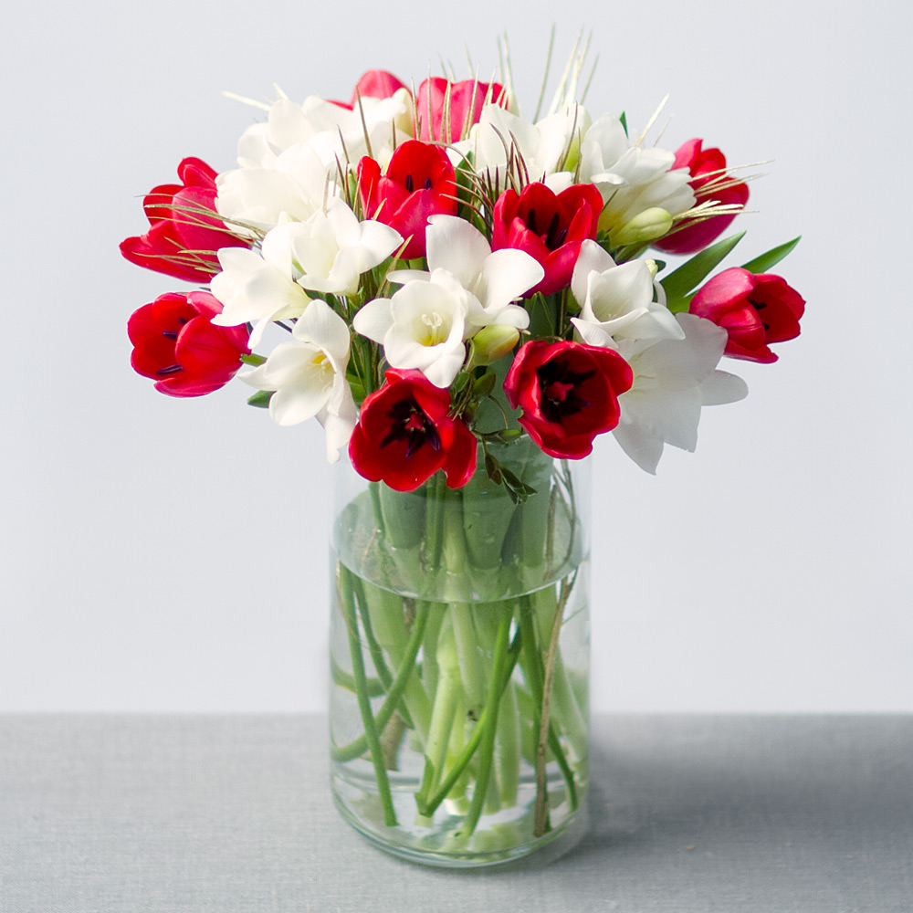 Image of Send a delightful Christmas gift to someone special this festive season with this gorgeous array of Tulips & Freesias surrounded by gold Grevillea.The simple but beautiful bouquet will certainly help to inject some festive cheer in to the home.