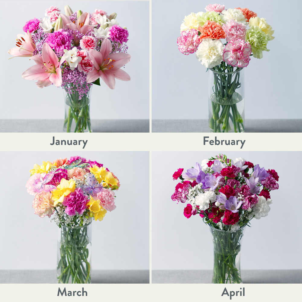 Image of Flowers for a Year