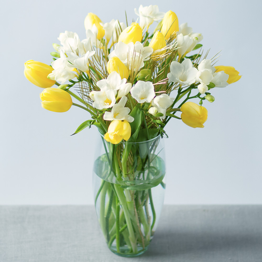 Image of A beautiful springtime bouquet featuring sunny yellow Tulips and crisp white Freesias finished with stunning golden Grevilla leaf.