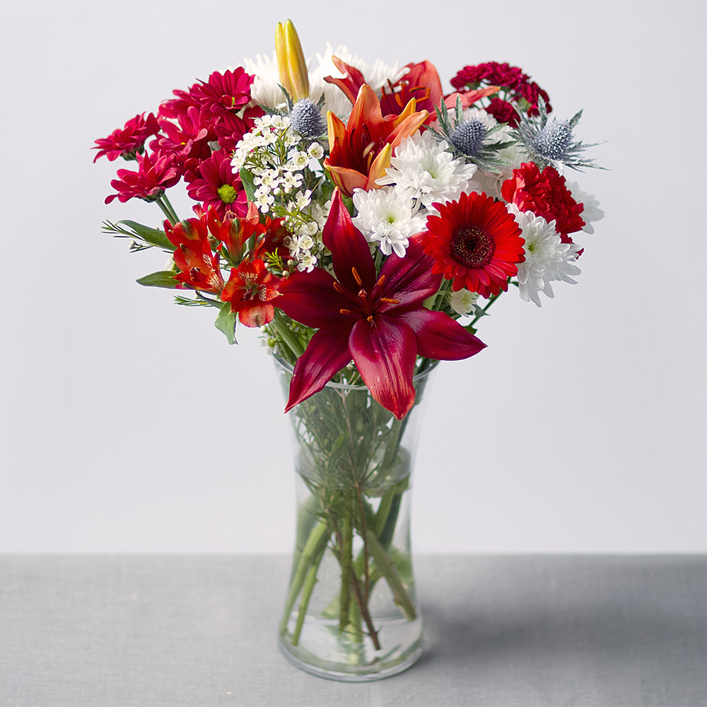Image of A red and white Christmas bouquet with red Asiatic Lily, Germini, Carnations and Alstroemeria with mixed Chrysanthemums and finished with snow-dusted Thistle and white Wax flower.