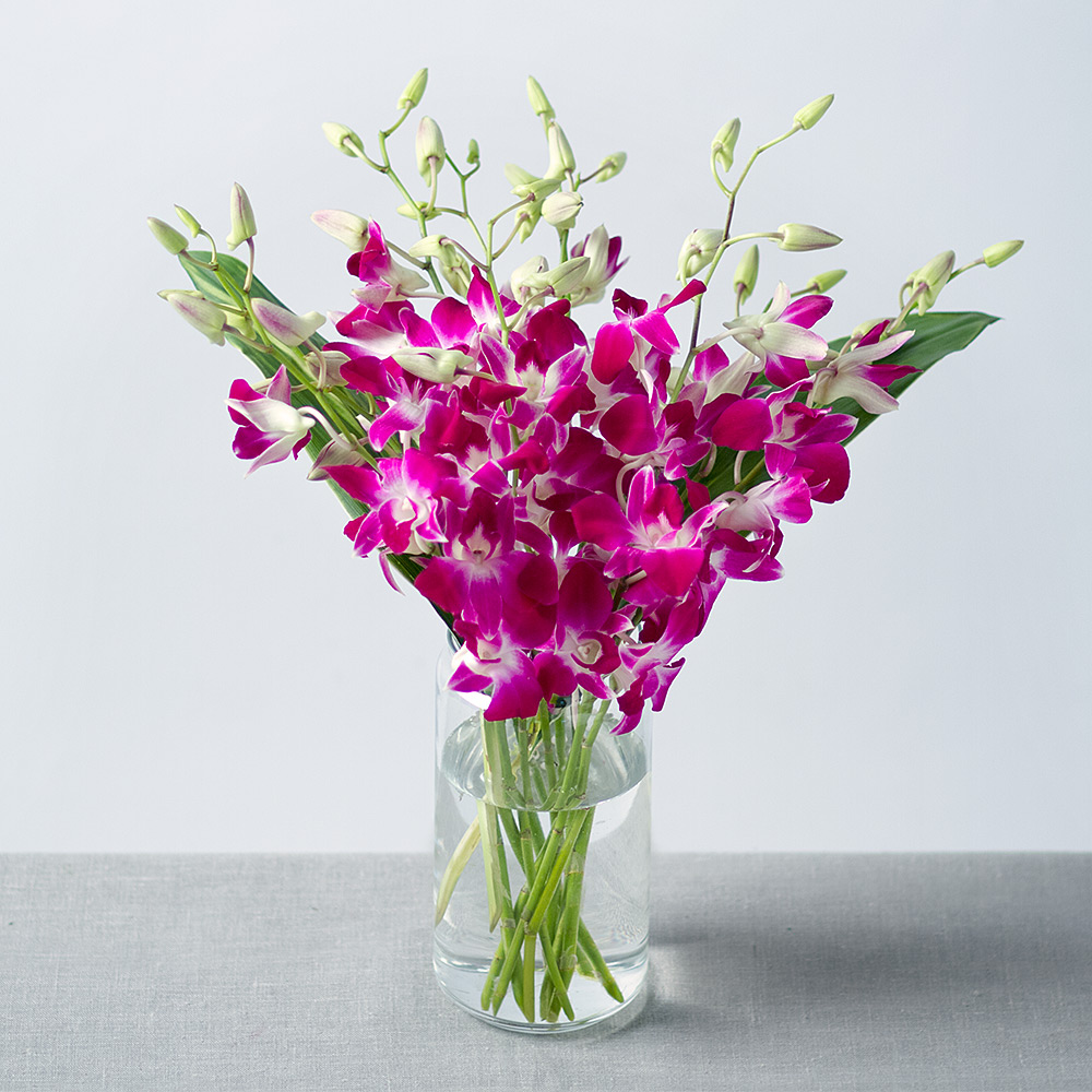 Image of An exotic oriental bouquet of long stemmed Dendrobium Orchids in a vibrant fuchsia colour. This delicate flower will enhance any occasion with its stunning oriental beauty.Grown in Thailand on beds of coconut shells, we choose a strong, long lasting variety.