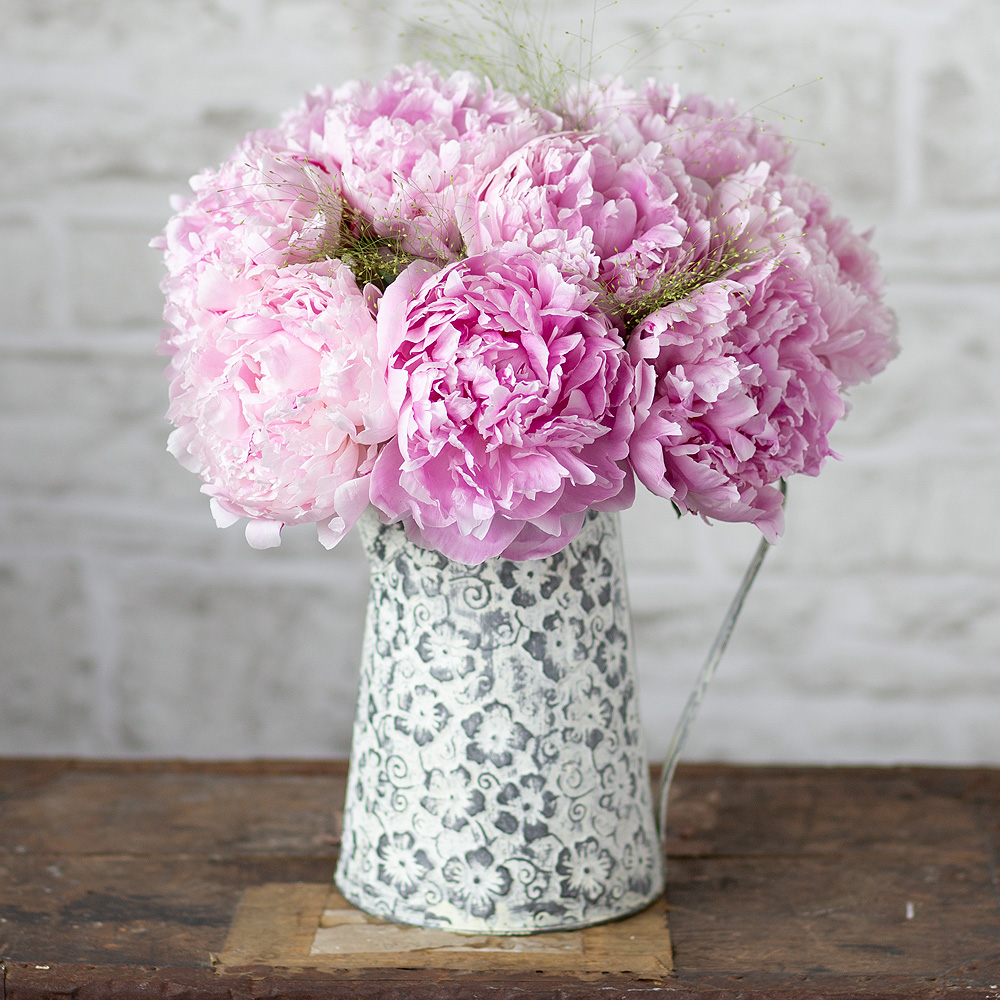 Image of A simply stunning bouquet of pretty pink Peonies accompanied by stems of Panicum grass which will look wonderful displayed in the home.This gorgeous arrangement will make the perfect gift to send to someone special this summer.Please note that Peonies are a seasonal flower and are only available for a limited time.