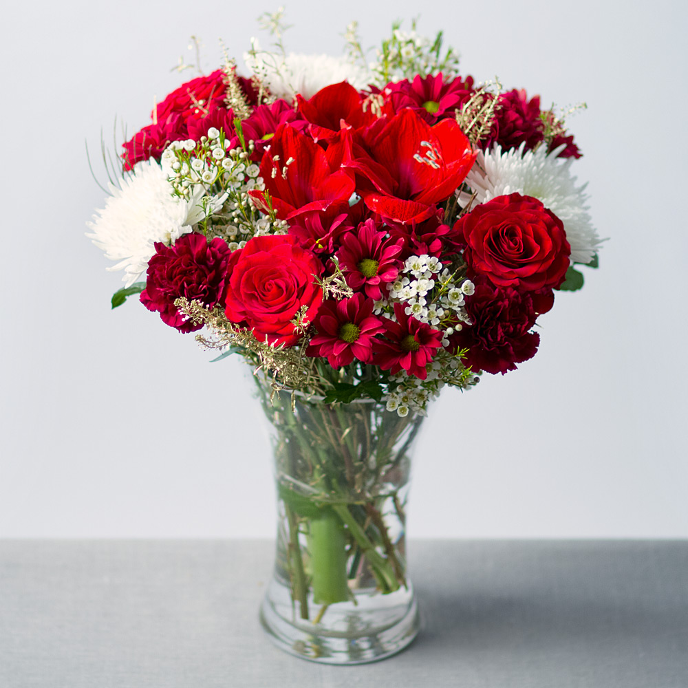 Image of Rich red Roses and dramatic red Amaryllis provide a luxurious feel to this gorgeous Christmas flower arrangement. Red and white Chrysanthemums, Carnations and white Wax Flower feature alongside gold Green Bell leaves and golden Grevillea foliage.
